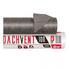 DACHVENT 100